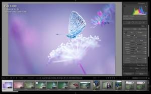 Obróbka zdjęć cyfrowych, edycja zdjęć cyfrowych, jak edytować zdjęcia cyfrowe, do czego służy Photoshop